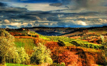 Tuscan landscape Paintings