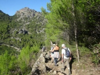 Walkers on Mallorca